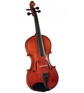 Viola 14